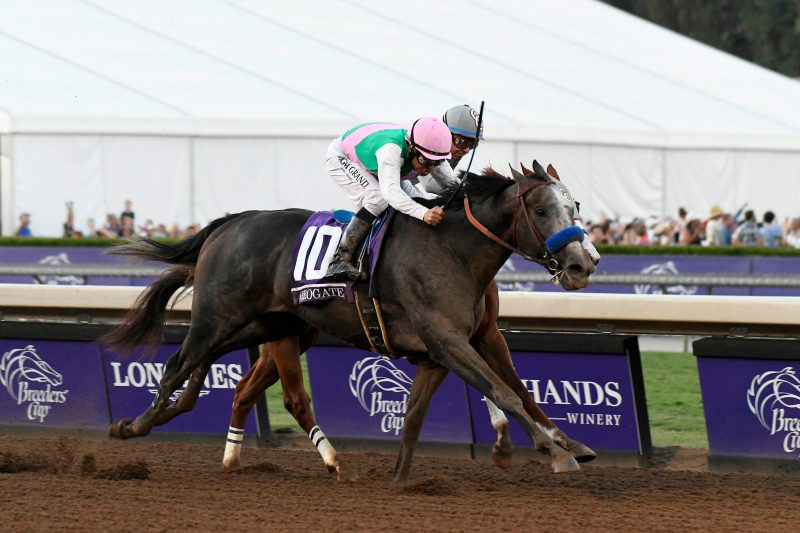 Arrogate remains on course for Pacific Classic at Del Mar